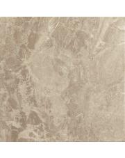 Terakota Dabo gris brillo 45x45